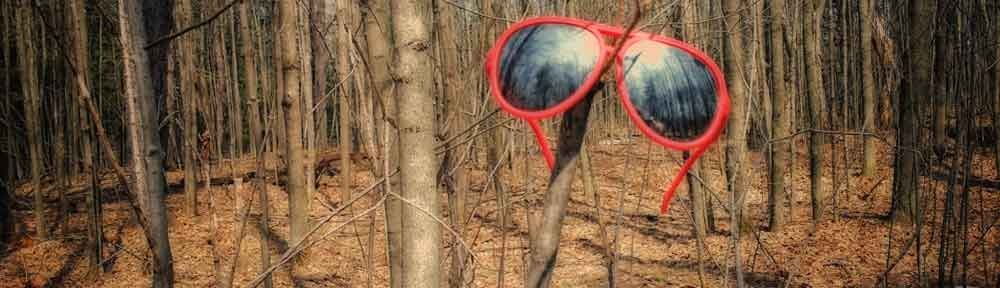 Glasses in the Woods